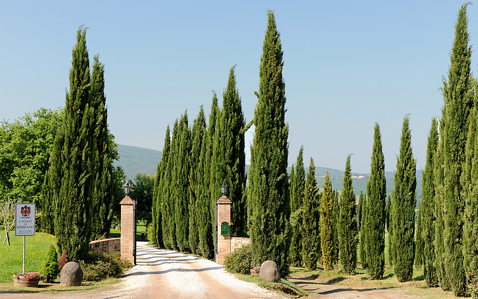 CdB - Villa & Winery Entrance