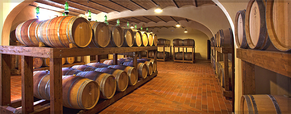 Tour our winery and taste our super Tuscan wines.